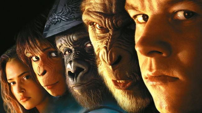 人間の遺伝子 猿の脳 移植成功に関連した画像-01