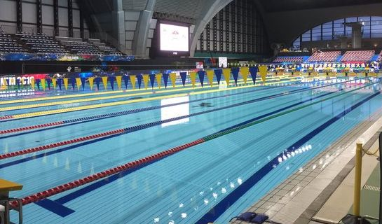 オリンピック 五輪 リオ五輪 プール 変色に関連した画像-01
