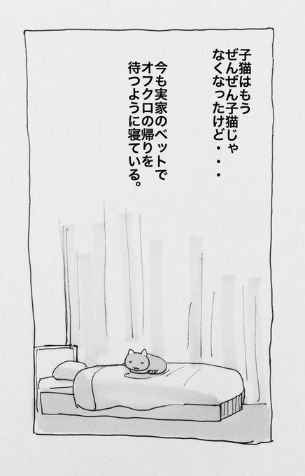 認知症 漫画 ネコに関連した画像-19