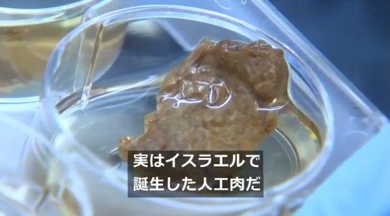 牛 細胞培養 ステーキ肉生産に関連した画像-03