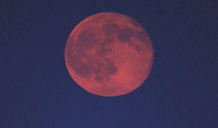 天体 ストロベリームーン 赤い月 満月 に関連した画像-01