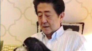 安倍総理 安倍首相 安倍晋三 休日 休養 左翼 パヨク 批判に関連した画像-01