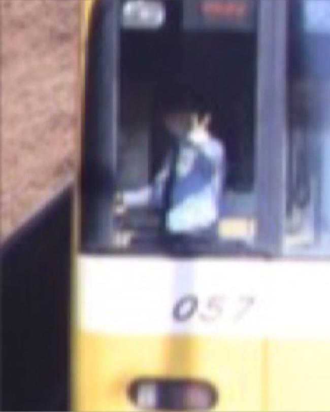 カメラマン 桜 電車 写真 奇跡の一枚に関連した画像-05