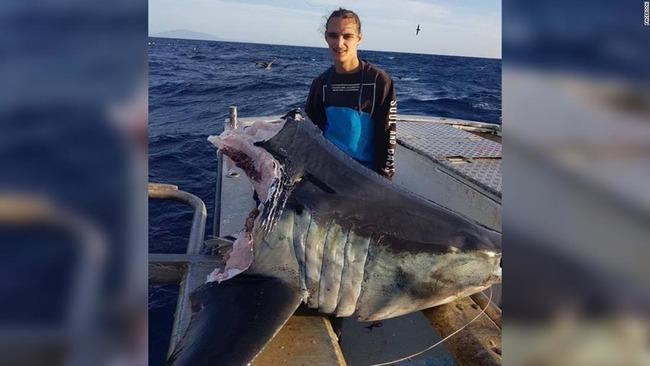 オーストラリア 巨大ザメ 食いちぎられるに関連した画像-03