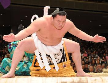 白鵬 相撲 ティンカーベルに関連した画像-01