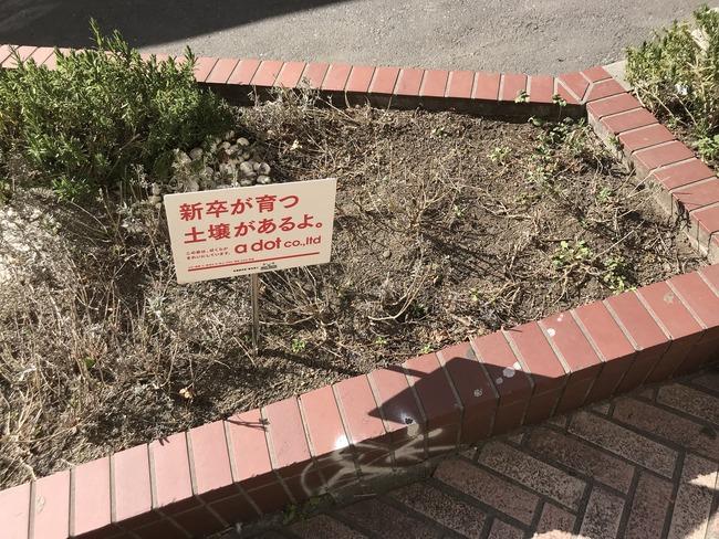 土壌 新卒 看板に関連した画像-02