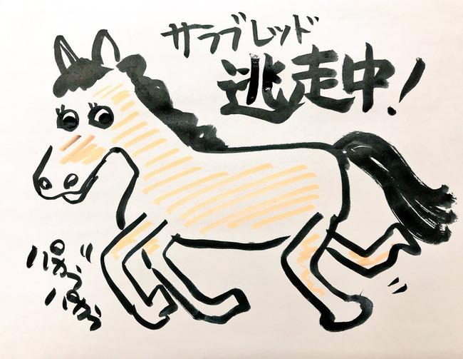 愛知県警 馬 サラブレッド 逃走に関連した画像-02
