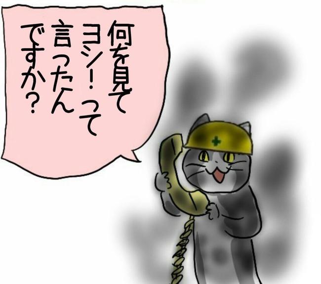 現場猫 中央労働災害防止協会 安全衛生かべしんぶん ゼロ災 労災に関連した画像-08
