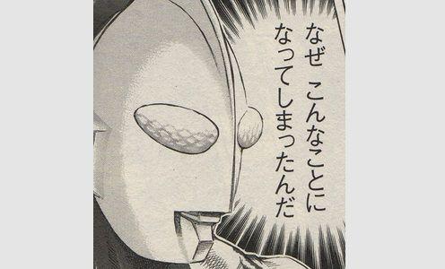 ソシャゲ カードテキスト 子豚に関連した画像-01