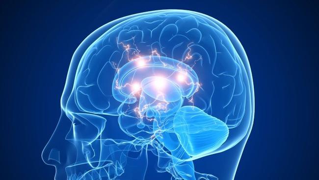 脳 ビッグデータ クラウド サービスに関連した画像-01