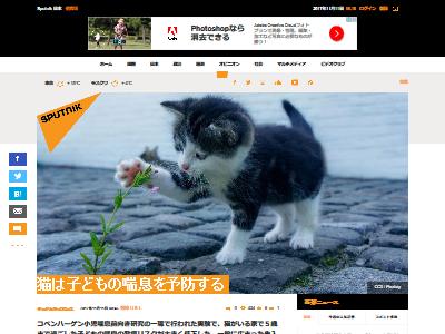 猫 子供 喘息予防に関連した画像-02