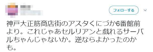 けものフレンズ 神戸 張りぼて 展示 サーバル セルリアン 位置 逆に関連した画像-03