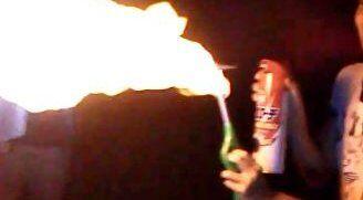 愛知県の中学生「蜂の巣あるやんけ!ガス缶火炎放射で燃やしたろ!」→工場など約3400平方メートル燃える