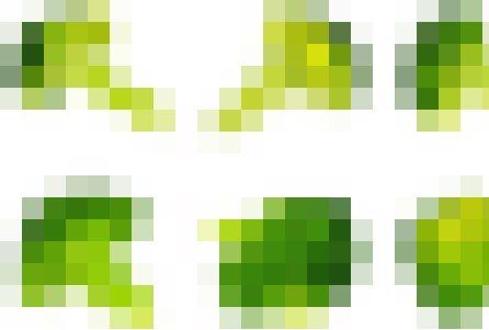 LINE スタンプ ブロッコリー カリフラワーに関連した画像-01