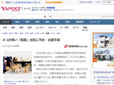 ネコ 青島 不妊 去勢 手術に関連した画像-02