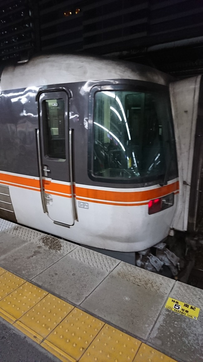 特急列車 指定席 車両 切符に関連した画像-02