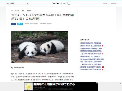 パンダの赤ちゃん 小さい なぜに関連した画像-02