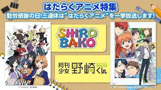 SHIROBAKO野崎くん一挙放送に関連した画像-01