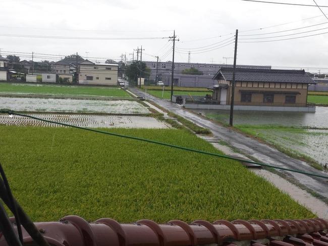 茨城県 大雨 救助 ツイッターに関連した画像-02
