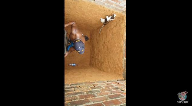 ネコ 穴 脱出 救出 猫 に関連した画像-08