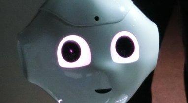 ペッパーくん 無能 解雇 アスペに関連した画像-01