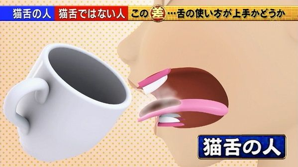 猫舌 舌先 先端に関連した画像-01