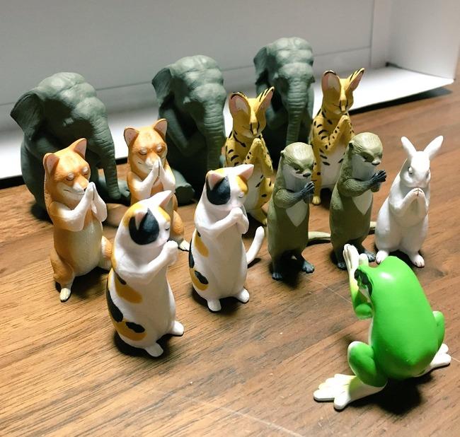 合唱 ガチャガチャ ガシャポン 動物 宗教に関連した画像-04