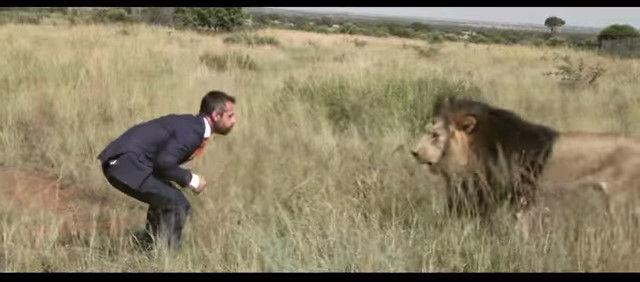 ライオン 紳士に関連した画像-01
