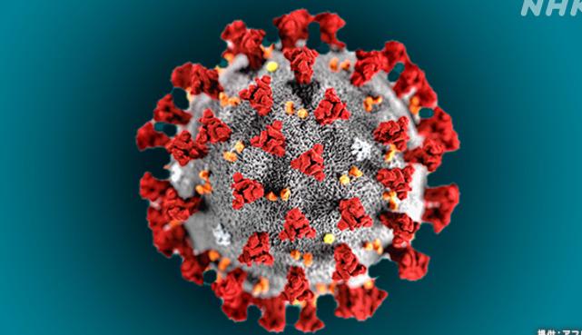 全国 新規感染者 過去最多 新型コロナウイルスに関連した画像-01