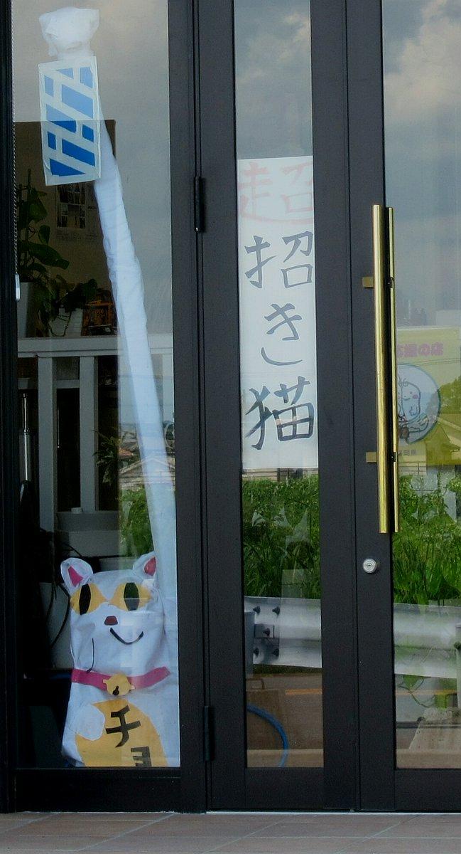 美容院 嫌々営業中 ネタ 盛り塩 招き猫に関連した画像-03