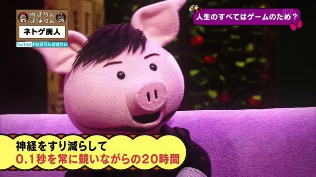 ネトゲ ネトゲ廃人 NHK 特集 ねほりんぱほりんに関連した画像-15