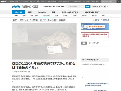 群馬県 新種のイルカ 化石に関連した画像-02