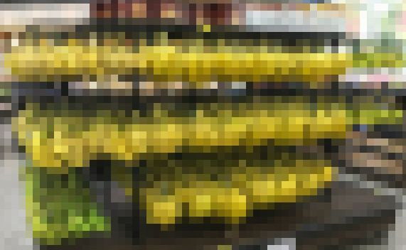 ドンキーコング ボーナスステージ スーパー バナナに関連した画像-01