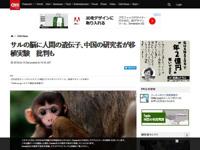 人間の遺伝子 猿の脳 移植成功に関連した画像-02