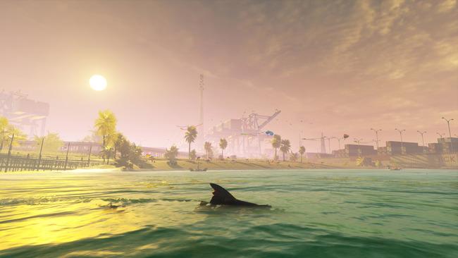 サメゲームManeater配信開始に関連した画像-06