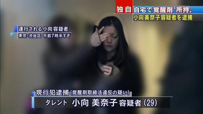 小向美奈子 覚せい剤に関連した画像-01