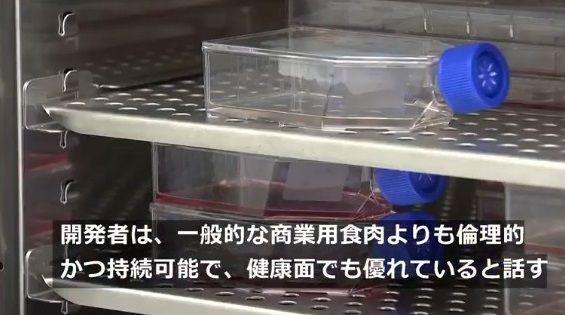 牛 細胞培養 ステーキ肉生産に関連した画像-07