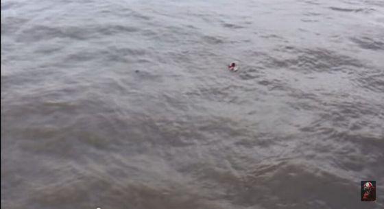ユーチューバー 溺れるに関連した画像-04