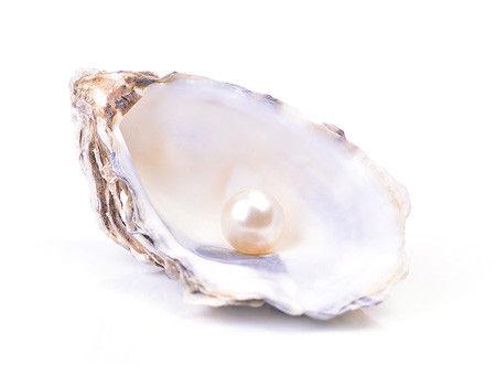 真珠 フィリピン 巨大 パラワン島に関連した画像-01