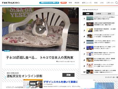 子ネコ トルコ 日本人 猫食 拘束 に関連した画像-02