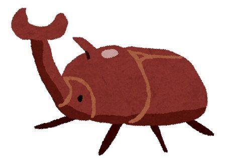 カブトムシ 珍獣屋 食用に関連した画像-01