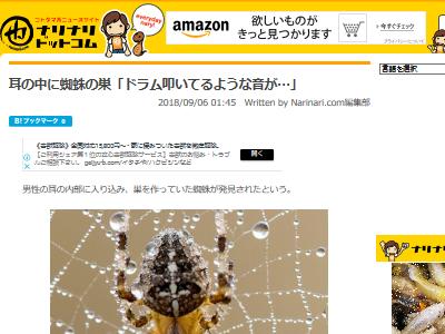 耳 ドラム 蜘蛛に関連した画像-02