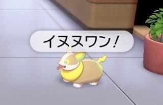 ワンパチ 鳴き声 イヌヌワン ワパワパ アニメ版に関連した画像-05
