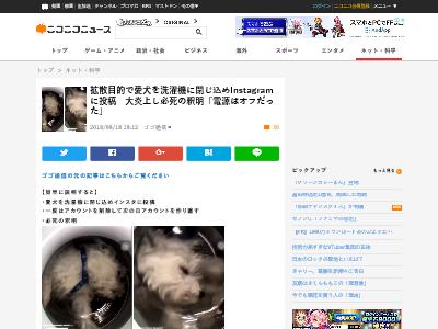 洗濯機 Instagram 犬 閉じ込める 炎上 愛犬 に関連した画像-02