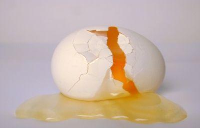 スーパー 卵 孵化 無精卵 ひよこ アヒルに関連した画像-01