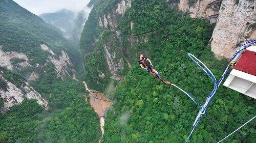 【酷すぎ】中国、祝い事でブタにバンジージャンプをさせてしまう ネット「そのブタが何か悪い事でもしたか?」