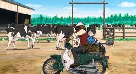 牛肉 牛 飼育 フローに関連した画像-01