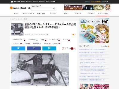 タスマニアタイガー 未公開映像 公開 フクロオオカミに関連した画像-02