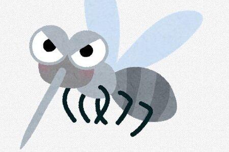 蚊 先生 小学生 回答 怖いに関連した画像-01