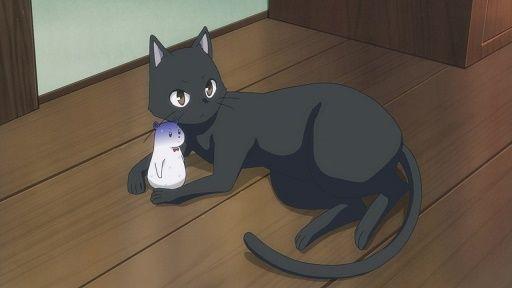 猫 勉強 動画 邪魔に関連した画像-01